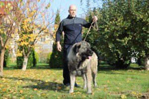 Berger femelle du Caucase et son propriétaire